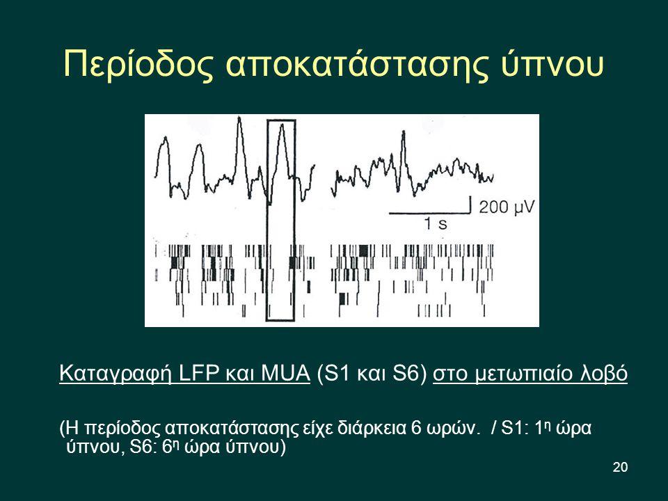 20 Περίοδος αποκατάστασης ύπνου Καταγραφή LFP και MUA (S1 και S6) στο μετωπιαίο λοβό (Η περίοδος αποκατάστασης είχε διάρκεια 6 ωρών.