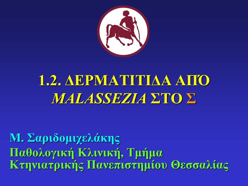 ΑΙΤΙΟΛΟΓΙΑ ΣΓM.pachydermatis (Σ, Γ): μη λιποεξαρτώμενη ΓM.