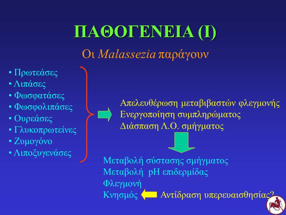 ΠΑΘΟΓΕΝΕΙΑ (Ι) Οι Malassezia παράγουν Πρωτεάσες Λιπάσες Φωσφατάσες Φωσφολιπάσες Ουρεάσες Γλυκοπρωτείνες Ζυμογόνο Λιποξυγενάσες Απελευθέρωση μεταβιβαστών φλεγμονής Ενεργοποίηση συμπληρώματος Διάσπαση Λ.Ο.
