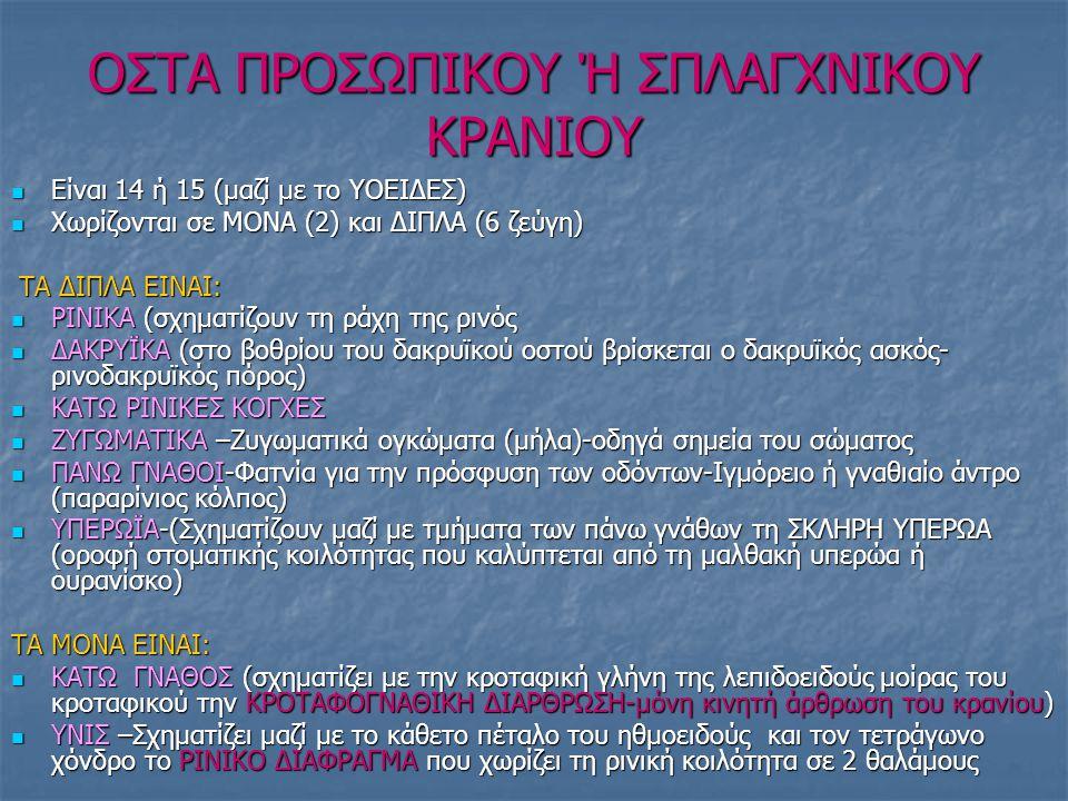 OΣΤΑ ΠΡΟΣΩΠΙΚΟΥ Ή ΣΠΛΑΓΧΝΙΚΟΥ ΚΡΑΝΙΟΥ Είναι 14 ή 15 (μαζί με το ΥΟΕΙΔΕΣ) Είναι 14 ή 15 (μαζί με το ΥΟΕΙΔΕΣ) Χωρίζονται σε ΜΟΝΑ (2) και ΔΙΠΛΑ (6 ζεύγη) Χωρίζονται σε ΜΟΝΑ (2) και ΔΙΠΛΑ (6 ζεύγη) ΤΑ ΔΙΠΛΑ ΕΙΝΑΙ: ΤΑ ΔΙΠΛΑ ΕΙΝΑΙ: ΡΙΝΙΚΑ (σχηματίζουν τη ράχη της ρινός ΡΙΝΙΚΑ (σχηματίζουν τη ράχη της ρινός ΔΑΚΡΥΪΚΑ (στο βοθρίου του δακρυϊκού οστού βρίσκεται ο δακρυϊκός ασκός- ρινοδακρυϊκός πόρος) ΔΑΚΡΥΪΚΑ (στο βοθρίου του δακρυϊκού οστού βρίσκεται ο δακρυϊκός ασκός- ρινοδακρυϊκός πόρος) ΚΑΤΩ ΡΙΝΙΚΕΣ ΚΟΓΧΕΣ ΚΑΤΩ ΡΙΝΙΚΕΣ ΚΟΓΧΕΣ ΖΥΓΩΜΑΤΙΚΑ –Ζυγωματικά ογκώματα (μήλα)-οδηγά σημεία του σώματος ΖΥΓΩΜΑΤΙΚΑ –Ζυγωματικά ογκώματα (μήλα)-οδηγά σημεία του σώματος ΠΑΝΩ ΓΝΑΘΟΙ-Φατνία για την πρόσφυση των οδόντων-Ιγμόρειο ή γναθιαίο άντρο (παραρίνιος κόλπος) ΠΑΝΩ ΓΝΑΘΟΙ-Φατνία για την πρόσφυση των οδόντων-Ιγμόρειο ή γναθιαίο άντρο (παραρίνιος κόλπος) ΥΠΕΡΩΪΑ-(Σχηματίζουν μαζί με τμήματα των πάνω γνάθων τη ΣΚΛΗΡΗ ΥΠΕΡΩΑ (οροφή στοματικής κοιλότητας που καλύπτεται από τη μαλθακή υπερώα ή ουρανίσκο) ΥΠΕΡΩΪΑ-(Σχηματίζουν μαζί με τμήματα των πάνω γνάθων τη ΣΚΛΗΡΗ ΥΠΕΡΩΑ (οροφή στοματικής κοιλότητας που καλύπτεται από τη μαλθακή υπερώα ή ουρανίσκο) ΤΑ ΜΟΝΑ ΕΙΝΑΙ: ΚΑΤΩ ΓΝΑΘΟΣ (σχηματίζει με την κροταφική γλήνη της λεπιδοειδούς μοίρας του κροταφικού την ΚΡΟΤΑΦΟΓΝΑΘΙΚΗ ΔΙΑΡΘΡΩΣΗ-μόνη κινητή άρθρωση του κρανίου) ΚΑΤΩ ΓΝΑΘΟΣ (σχηματίζει με την κροταφική γλήνη της λεπιδοειδούς μοίρας του κροταφικού την ΚΡΟΤΑΦΟΓΝΑΘΙΚΗ ΔΙΑΡΘΡΩΣΗ-μόνη κινητή άρθρωση του κρανίου) ΥΝΙΣ –Σχηματίζει μαζί με το κάθετο πέταλο του ηθμοειδούς και τον τετράγωνο χόνδρο το ΡΙΝΙΚΟ ΔΙΑΦΡΑΓΜΑ που χωρίζει τη ρινική κοιλότητα σε 2 θαλάμους ΥΝΙΣ –Σχηματίζει μαζί με το κάθετο πέταλο του ηθμοειδούς και τον τετράγωνο χόνδρο το ΡΙΝΙΚΟ ΔΙΑΦΡΑΓΜΑ που χωρίζει τη ρινική κοιλότητα σε 2 θαλάμους