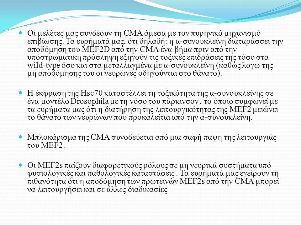 Οι μελέτες μας συνδέουν τη CMA άμεσα με τον πυρηνικό μηχανισμό επιβίωσης. Τα ευρήματά μας, ότι δηλαδή: η α-συνουκλεΐνη διαταράσσει την αποδόμηση του M