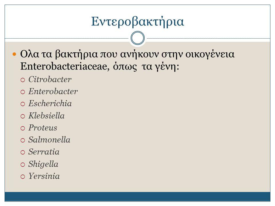 Εντεροβακτήρια Περίπου 30 γένη Τα πιο συνηθισμένα παθογόνα βακτήρια (πχ Salmonella, E.coli) Gram αρνητικά ραβδία Αερόβια και προαιρετικά αναερόβια