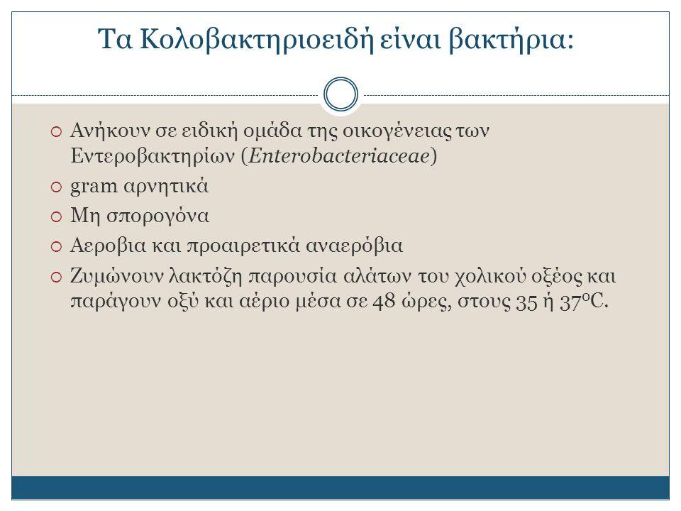 Μη Εντερικής προέλευσης κολοβακτηριοειδή (Total Coliforms) Μη Εντερικής προέλευσης κολοβακτηριοειδή (Total Coliforms) Εντερικής προέλευσης κολοβακτηριοειδή (Fecal Coliforms) Εντερικής προέλευσης κολοβακτηριοειδή (Fecal Coliforms)  Ενδημούν στον εντερικό σωλήνα ζώων αλλά απομονώνονται και από το περιβάλλον  Ενδημούν αποκλειστικά στον εντερικό σωλήνα των θερμόαιμων ζώων  Αποτελούν δείκτη μόλυνσης από κόπρανα  Χαρακτηριστικότερος αντιπρόσωπος: Escherichia coli Τα κολοβακτηριοειδή διακρίνονται σε: