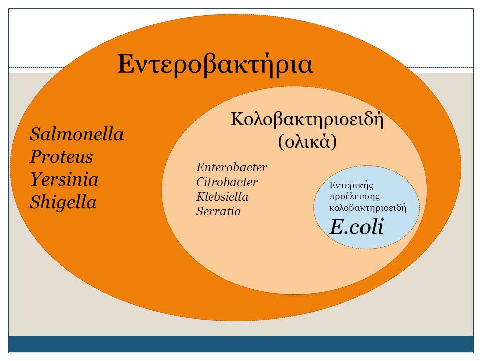 Εντεροβακτήρια Κολοβακτηριοειδή (ολικά) Εντερικής προέλευσης κολοβακτηριοειδή Ε.coli Salmonella Proteus Yersinia Shigella Enterobacter Citrobacter Kle