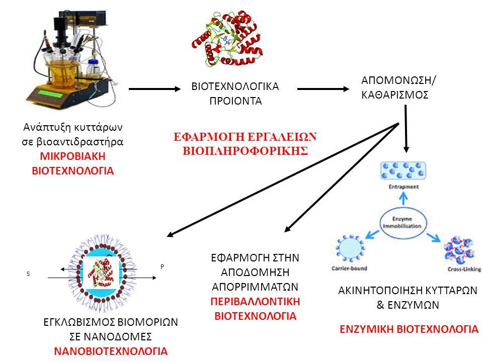 Ανάπτυξη κυττάρων σε βιοαντιδραστήρα ΜΙΚΡΟΒΙΑΚΗ ΒΙΟΤΕΧΝΟΛΟΓΙΑ ΒΙΟΤΕΧΝΟΛΟΓΙΚΑ ΠΡΟΙΟΝΤΑ ΑΠΟΜΟΝΩΣΗ/ ΚΑΘΑΡΙΣΜΟΣ AKINHTOΠΟΙΗΣΗ ΚΥΤΤΑΡΩΝ & ΕΝΖΥΜΩΝ ΕΦΑΡΜΟΓΗ