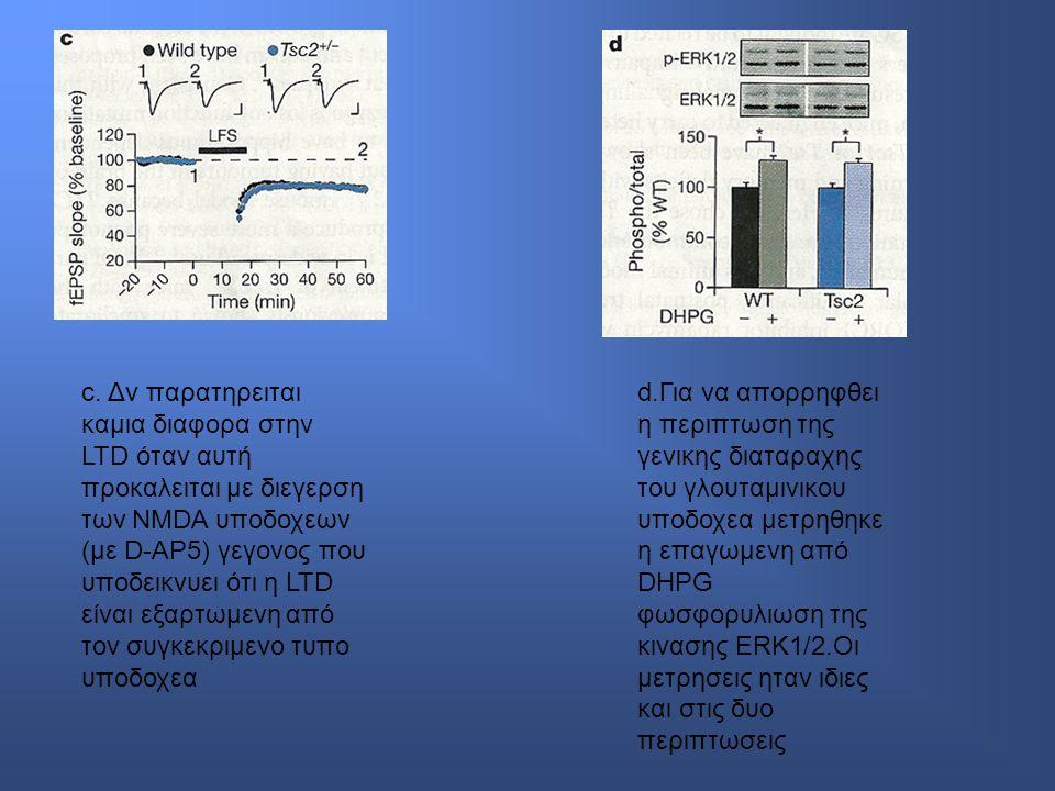 c. Δν παρατηρειται καμια διαφορα στην LTD όταν αυτή προκαλειται με διεγερση των NMDA υποδοχεων (με D-AP5) γεγονος που υποδεικνυει ότι η LTD είναι εξαρ
