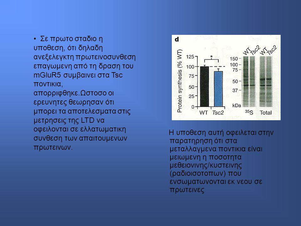 Σε πρωτο σταδιο η υποθεση, ότι δηλαδη ανεξελεγκτη πρωτεινοσυνθεση επαγωμενη από τη δραση του mGluR5 συμβαινει στα Tsc ποντικια, απορριφθηκε.Ωστοσο οι ερευνητες θεωρησαν ότι μπορει τα αποτελεσματα στις μετρησεις της LTD να οφειλονται σε ελλατωματικη συνθεση των απαιτουμενων πρωτεινων.
