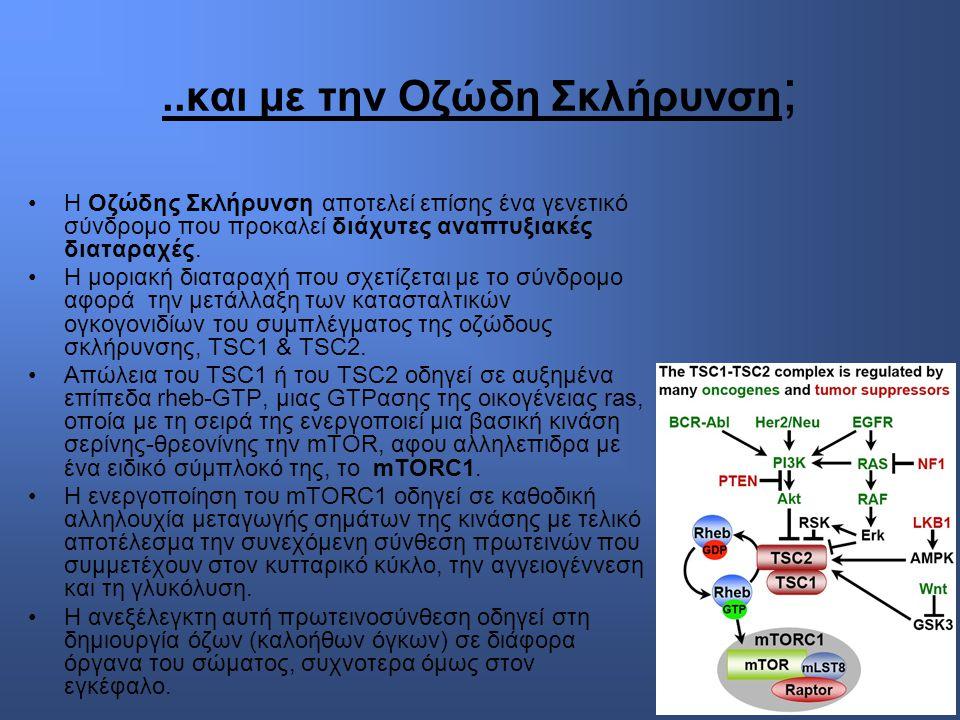 ..και με την Οζώδη Σκλήρυνση ; Η Οζώδης Σκλήρυνση αποτελεί επίσης ένα γενετικό σύνδρομο που προκαλεί διάχυτες αναπτυξιακές διαταραχές.