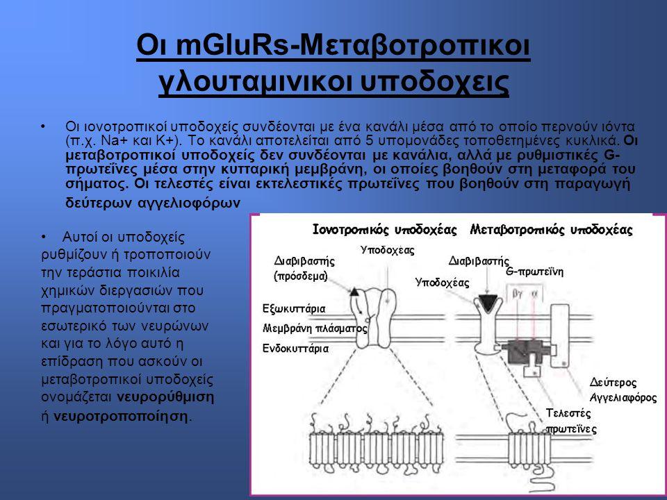 Οι mGluRs-Μεταβοτροπικοι γλουταμινικοι υποδοχεις Οι ιονοτροπικοί υποδοχείς συνδέονται με ένα κανάλι μέσα από το οποίο περνούν ιόντα (π.χ.
