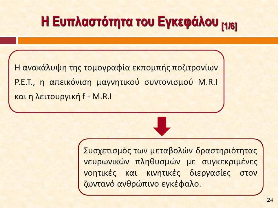 Η Ευπλαστότητα του Εγκεφάλου [1/6] 24 Η ανακάλυψη της τομογραφία εκπομπής ποζιτρονίων P.E.T., η απεικόνιση μαγνητικού συντονισμού M.R.I και η λειτουργ
