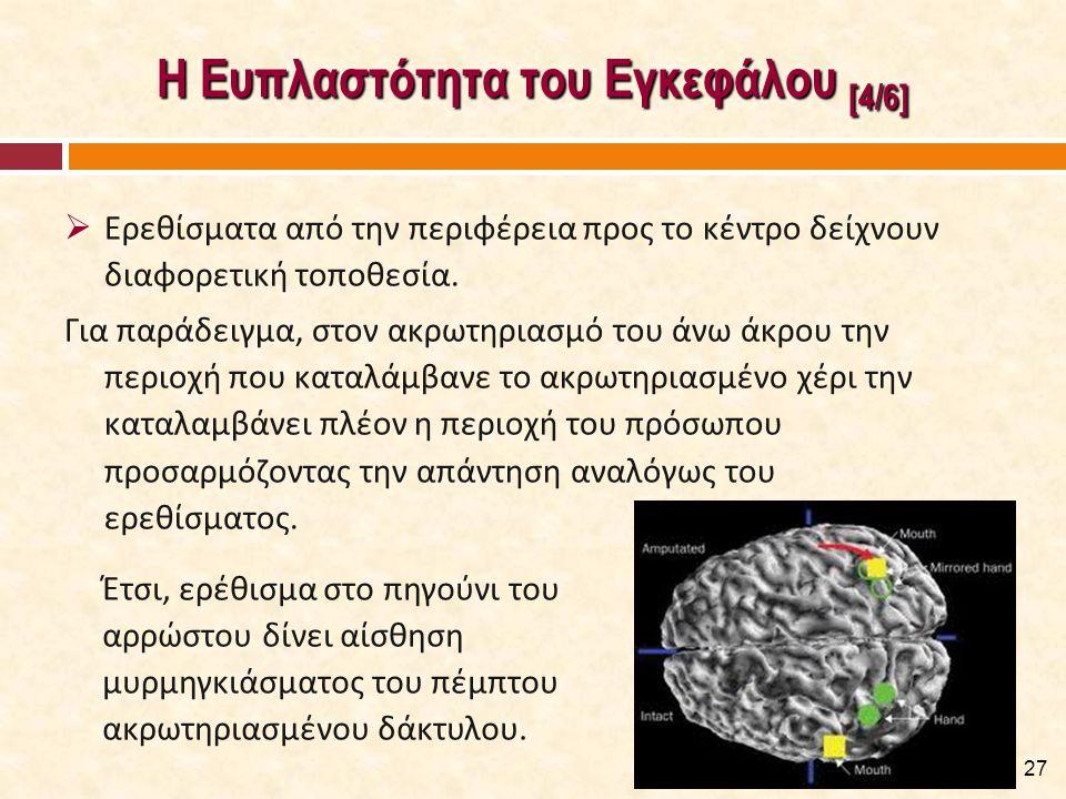Η Ευπλαστότητα του Εγκεφάλου [4/6]  Ερεθίσματα από την περιφέρεια προς το κέντρο δείχνουν διαφορετική τοποθεσία. Για παράδειγμα, στον ακρωτηριασμό το