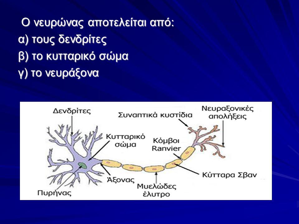 Φωτογραφία του Cajal (νευρώνας με τους δενδρίτες του)