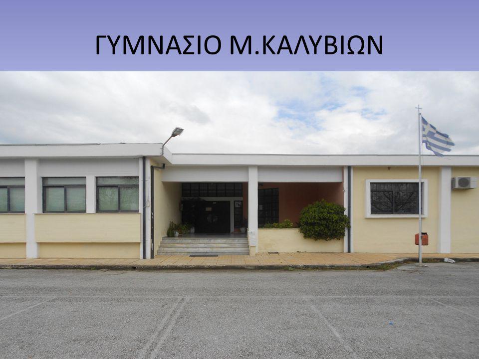 ΓΥΜΝΑΣΙΟ Μ.ΚΑΛΥΒΙΩΝ