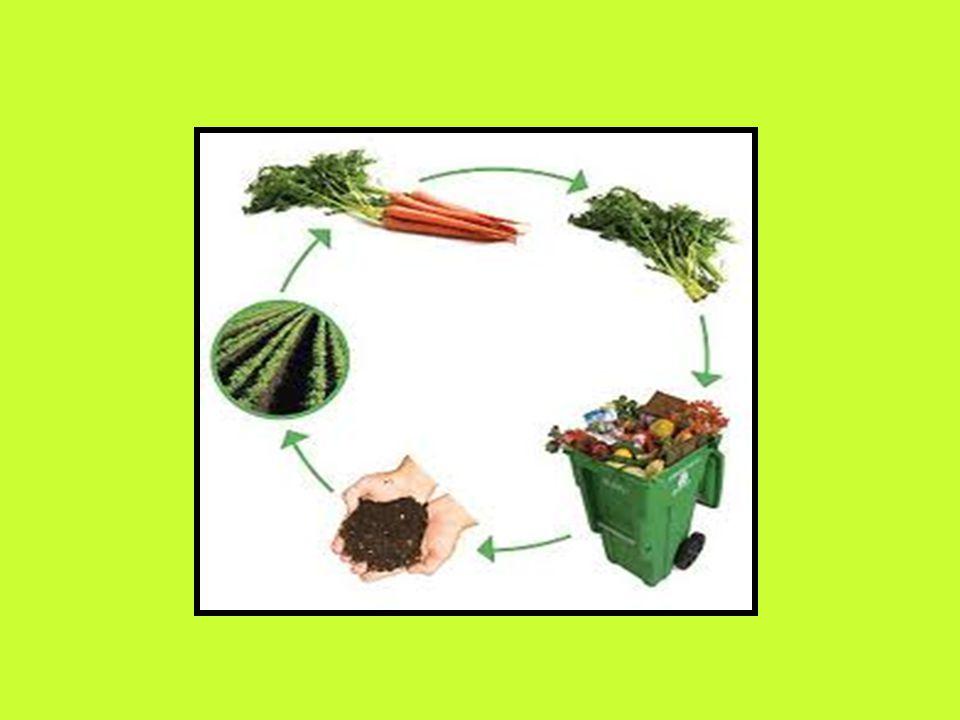 Ποια είναι αυτά; Τα φυτά γίνονται πιο ανθεκτικά στις διάφορες ασθένειες και η απόδοσή τους είναι ίδια με τη συμβατική καλλιέργια. Η γεύση και το άρωμα