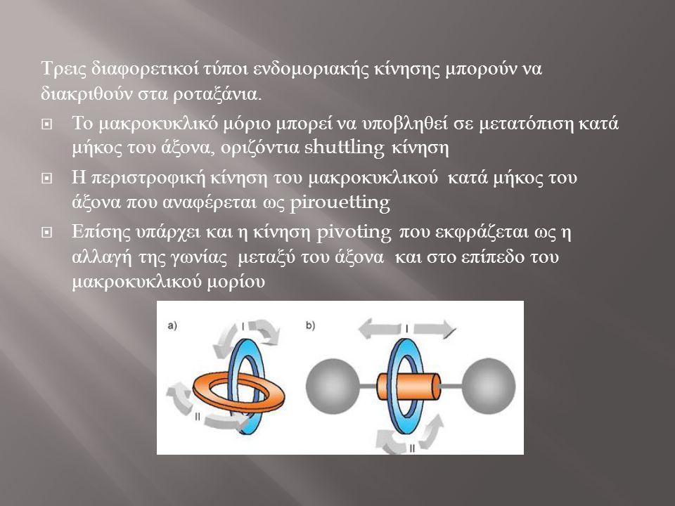 Τρεις διαφορετικοί τύποι ενδομοριακής κίνησης μπορούν να διακριθούν στα ροταξάνια.  Το μακροκυκλικό μόριο μπορεί να υποβληθεί σε μετατόπιση κατά μήκο
