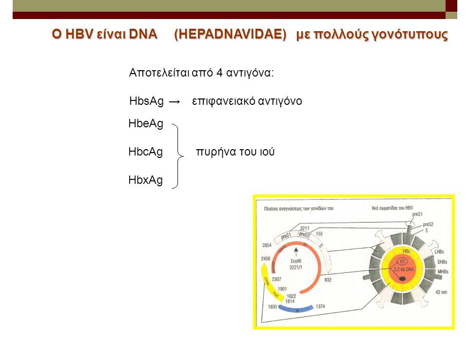 Ο HBV είναι DNA (HEPADNAVIDAE) με πολλούς γονότυπους Αποτελείται από 4 αντιγόνα: HbsAg→επιφανειακό αντιγόνο ΗbeAg HbcAg πυρήνα του ιού HbxAg