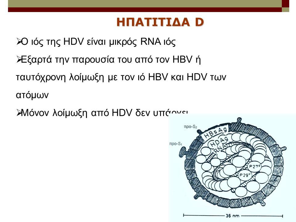  Ο ιός της HDV είναι μικρός RNA ιός  Εξαρτά την παρουσία του από τον HBV ή ταυτόχρονη λοίμωξη με τον ιό HBV και HDV των ατόμων  Μόνον λοίμωξη από H
