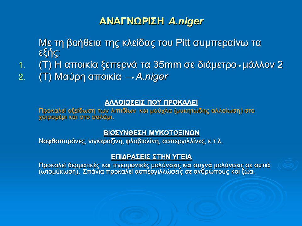 ΑΝΑΓΝΩΡΙΣΗ A.niger Με τη βοήθεια της κλείδας του Pitt συμπεραίνω τα εξής: 1. (Τ) Η αποικία ξεπερνά τα 35mm σε διάμετρο μάλλον 2 2. (Τ) Μαύρη αποικία A