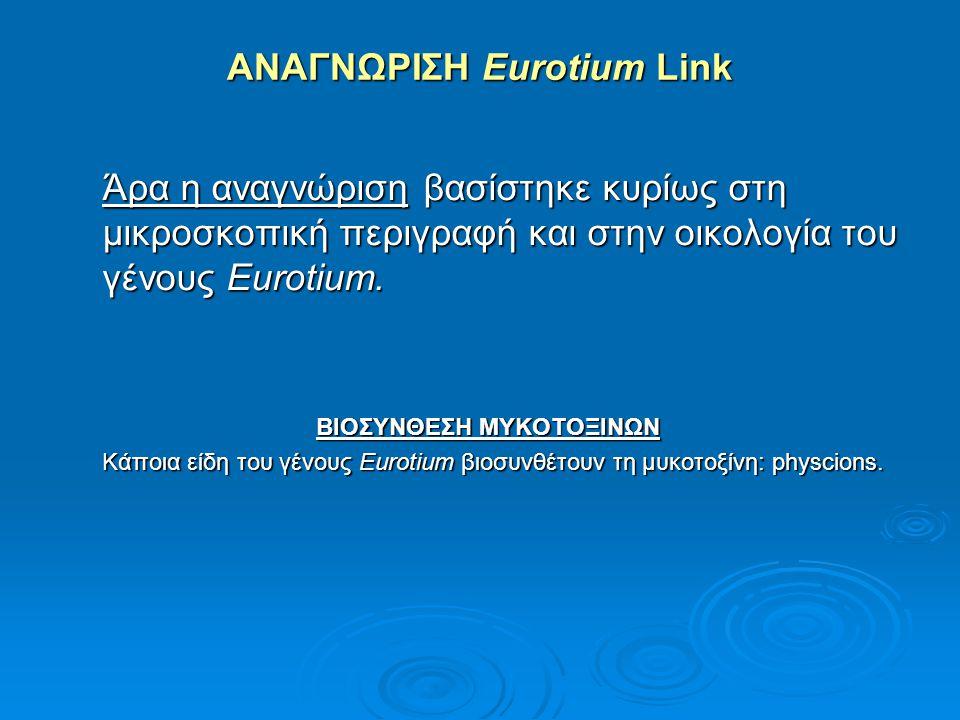 ΑΝΑΓΝΩΡΙΣΗ Eurotium Link Άρα η αναγνώριση βασίστηκε κυρίως στη μικροσκοπική περιγραφή και στην οικολογία του γένους Eurotium. ΒΙΟΣΥΝΘΕΣΗ ΜΥΚΟΤΟΞΙΝΩΝ Κ