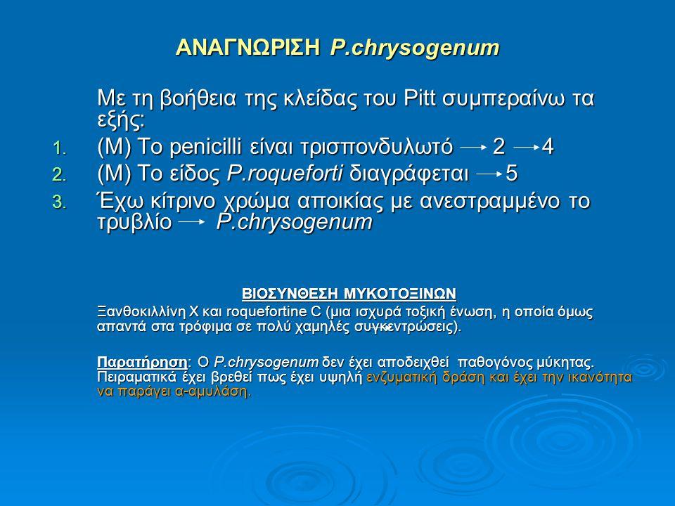 ΑΝΑΓΝΩΡΙΣΗ P.chrysogenum Με τη βοήθεια της κλείδας του Pitt συμπεραίνω τα εξής: 1. (Μ) Το penicilli είναι τρισπονδυλωτό 2 4 2. (Μ) Το είδος P.roquefor