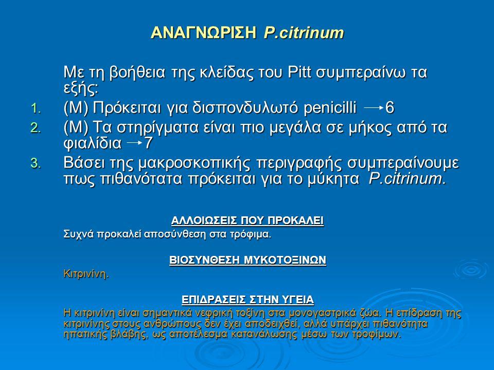 ΑΝΑΓΝΩΡΙΣΗ P.citrinum Με τη βοήθεια της κλείδας του Pitt συμπεραίνω τα εξής: 1. (Μ) Πρόκειται για δισπονδυλωτό penicilli 6 2. (Μ) Τα στηρίγματα είναι