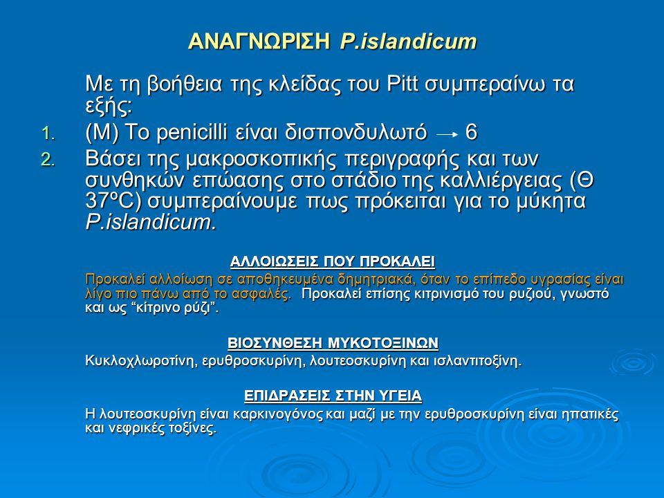 ΑΝΑΓΝΩΡΙΣΗ P.islandicum Με τη βοήθεια της κλείδας του Pitt συμπεραίνω τα εξής: 1. (Μ) Το penicilli είναι δισπονδυλωτό 6 2. Βάσει της μακροσκοπικής περ
