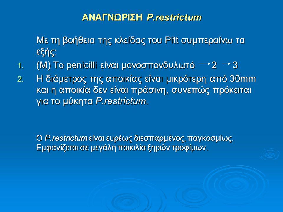 ΑΝΑΓΝΩΡΙΣΗ P.restrictum Με τη βοήθεια της κλείδας του Pitt συμπεραίνω τα εξής: 1. (Μ) Το penicilli είναι μονοσπονδυλωτό 2 3 2. Η διάμετρος της αποικία