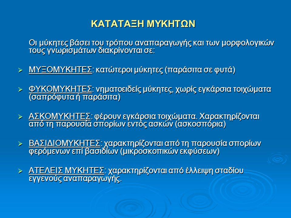 ΧΗΜΙΚΕΣ ΔΟΜΕΣ ΤΩΝ ΚΥΡΙΟΤΕΡΩΝ ΜΥΚΟΤΟΞΙΝΩΝ ΑΦΛΑΤΟΞΙΝΗ Β 1 ΑΦΛΑΤΟΞΙΝΗ Β 2 ΑΦΛΑΤΟΞΙΝΗ Β 1 ΑΦΛΑΤΟΞΙΝΗ Β 2 ΑΦΛΑΤΟΞΙΝΗ G 1 ΑΦΛΑΤΟΞΙΝΗ G 2 ΑΦΛΑΤΟΞΙΝΗ G 1 ΑΦΛΑΤΟΞΙΝΗ G 2