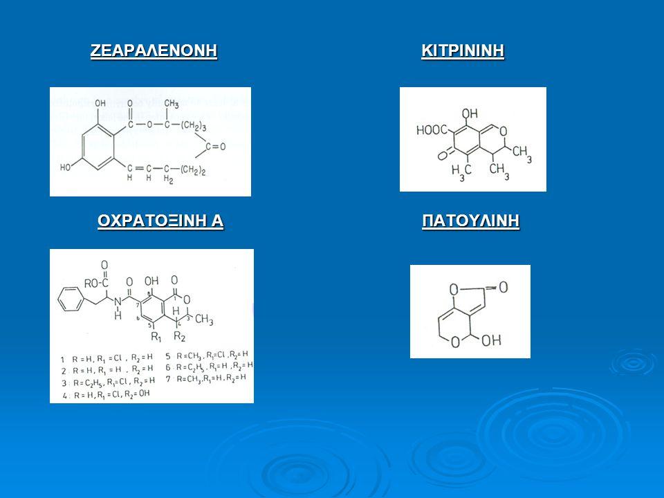 Candida spp.