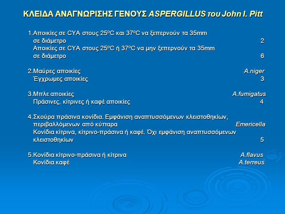 ΚΛΕΙΔΑ ΑΝΑΓΝΩΡΙΣΗΣ ΓΕΝΟΥΣ ASPERGILLUS του John I. Pitt 1.Αποικίες σε CYA στους 25ºC και 37ºC να ξεπερνούν τα 35mm 1.Αποικίες σε CYA στους 25ºC και 37º