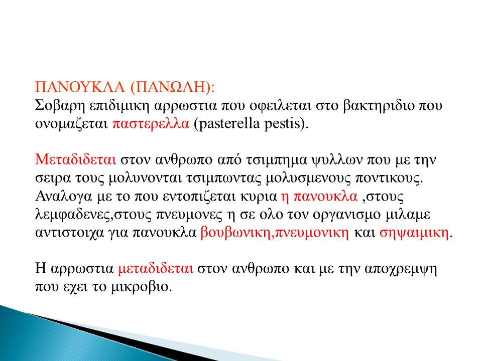 ΠΑΝΟΥΚΛΑ (ΠΑΝΩΛΗ): Σοβαρη επιδιμικη αρρωστια που οφειλεται στο βακτηριδιο που ονομαζεται παστερελλα (pasterella pestis). Μεταδιδεται στον ανθρωπο από