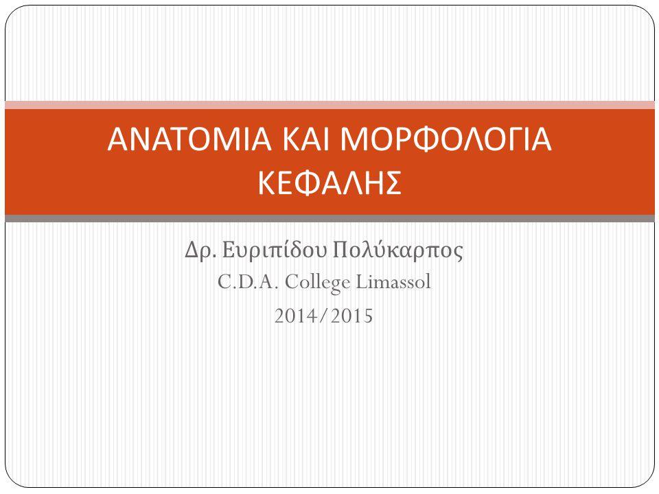 Δρ. Ευριπίδου Πολύκαρπος C.D.A. College Limassol 2014/2015 ΑΝΑΤΟΜΙΑ ΚΑΙ ΜΟΡΦΟΛΟΓΙΑ ΚΕΦΑΛΗΣ