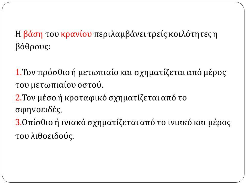 ΜΥΕΣ ΤΟΥ ΤΡΑΧΗΛΟΥ 1.ΠΡΟΣΘΙΟΠΛΑΓΙΟΙ. 2. ΠΡΟΣΘΙΟΙ. 3.