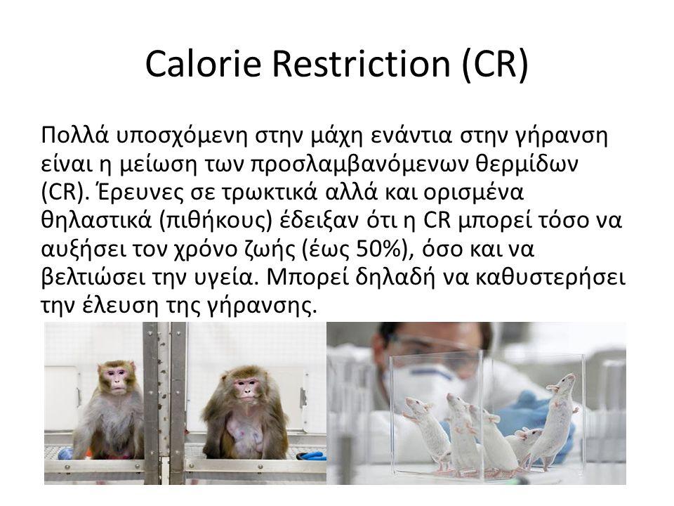Calorie Restriction (CR) Πολλά υποσχόμενη στην μάχη ενάντια στην γήρανση είναι η μείωση των προσλαμβανόμενων θερμίδων (CR).
