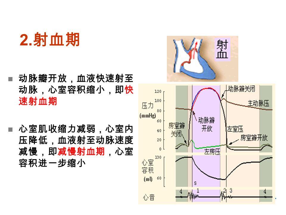 -11- 2. 射血期 动脉瓣开放,血液快速射至 动脉,心室容积缩小,即快 速射血期 心室肌收缩力减弱,心室内 压降低,血液射至动脉速度 减慢,即减慢射血期,心室 容积进一步缩小