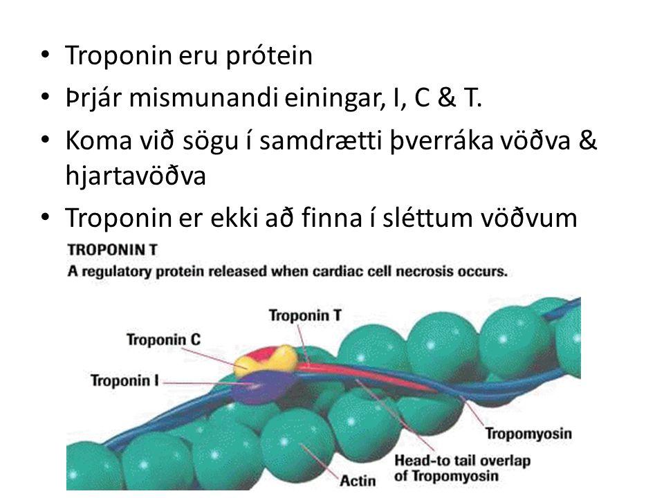 Troponin eru prótein Þrjár mismunandi einingar, I, C & T.