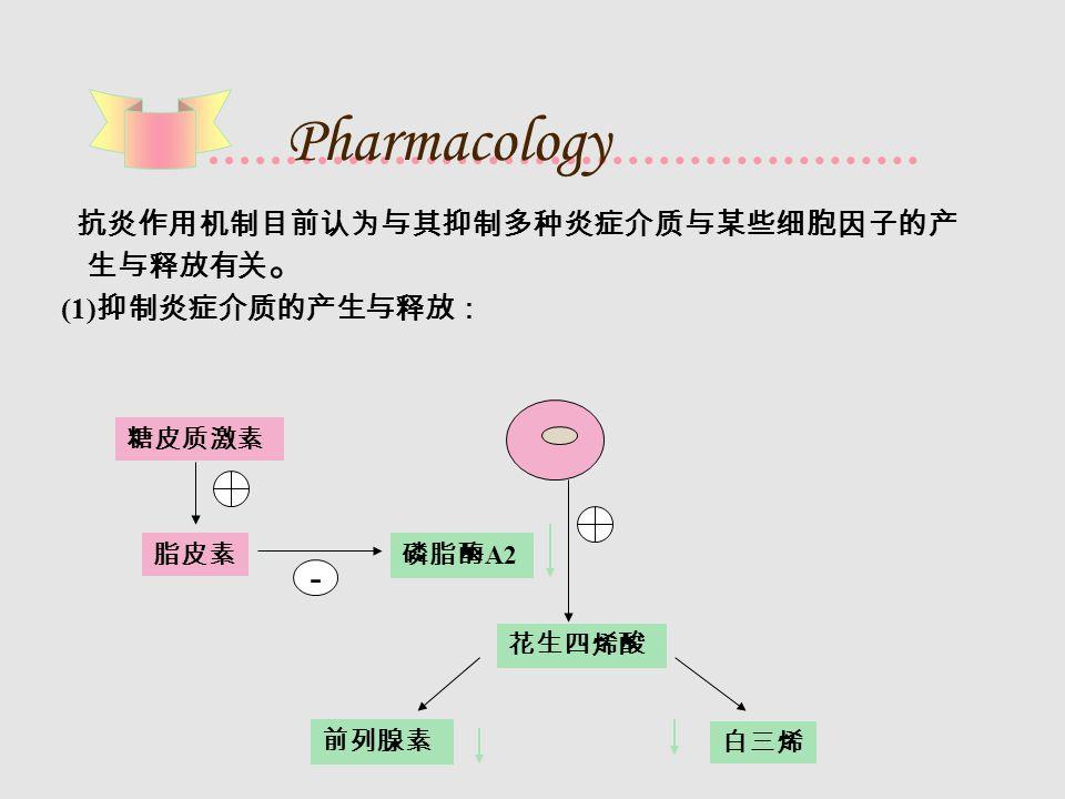 Pharmacology 抗炎作用机制目前认为与其抑制多种炎症介质与某些细胞因子的产 生与释放有关 。 (1) 抑制炎症介质的产生与释放: 糖皮质激素 脂皮素 白三烯 前列腺素 花生四烯酸 - 磷脂酶 A2