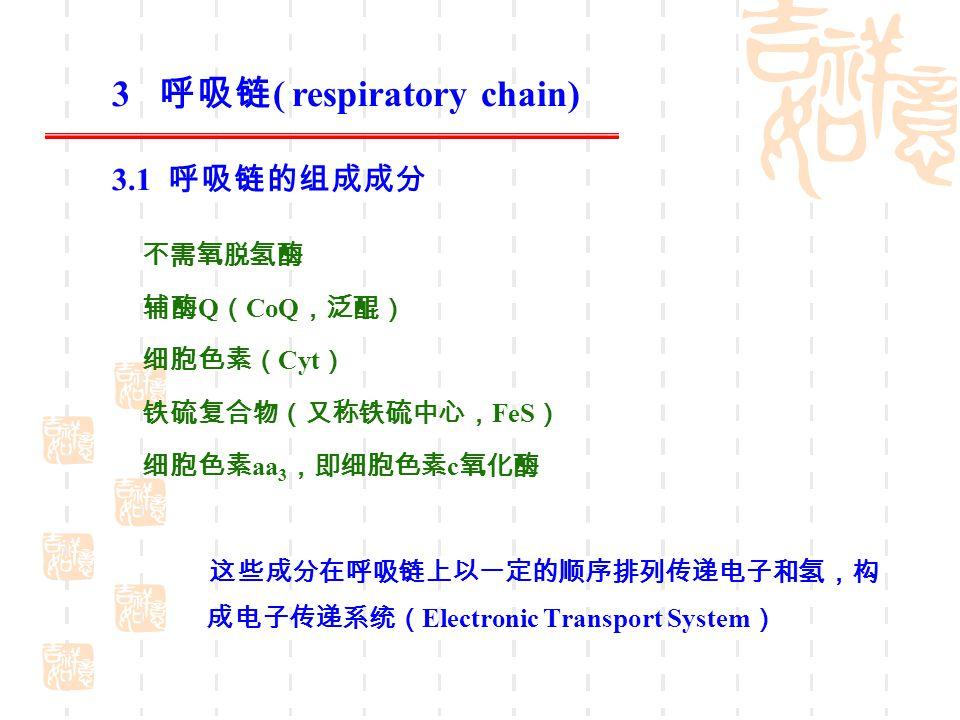 不需氧脱氢酶 辅酶 Q ( CoQ ,泛醌) 细胞色素( Cyt ) 铁硫复合物(又称铁硫中心, FeS ) 细胞色素 aa 3 ,即细胞色素 c 氧化酶 这些成分在呼吸链上以一定的顺序排列传递电子和氢,构 成电子传递系统( Electronic Transport System ) 3 呼吸链 (