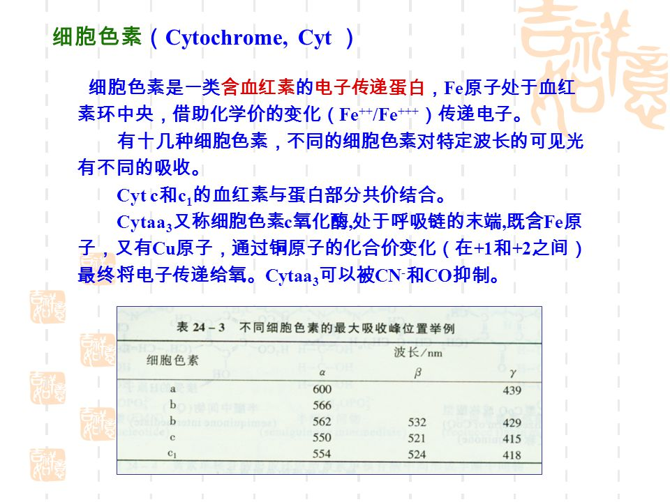 细胞色素( Cytochrome, Cyt ) 细胞色素是一类含血红素的电子传递蛋白, Fe 原子处于血红 素环中央,借助化学价的变化( Fe ++ /Fe +++ )传递电子。 有十几种细胞色素,不同的细胞色素对特定波长的可见光 有不同的吸收。 Cyt c 和 c 1 的血红素与蛋白部分共价结合。