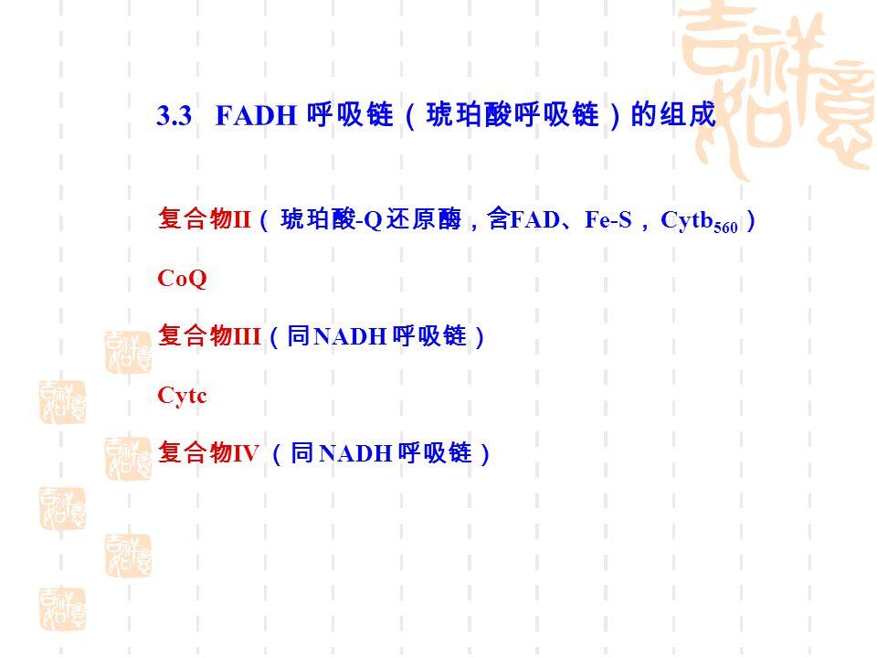 3.3 FADH 呼吸链(琥珀酸呼吸链)的组成 复合物 II ( 琥珀酸 -Q 还原酶,含 FAD 、 Fe-S , Cytb 560 ) CoQ 复合物 III (同 NADH 呼吸链) Cytc 复合物 IV (同 NADH 呼吸链)
