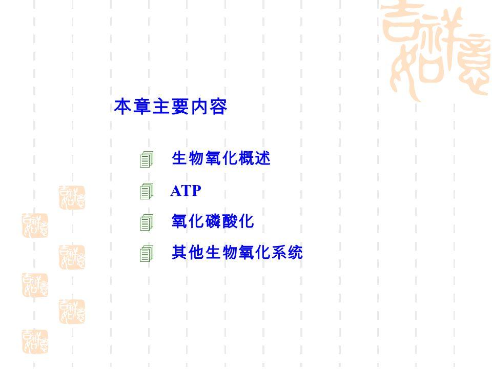 本章主要内容  生物氧化概述  ATP  氧化磷酸化  其他生物氧化系统
