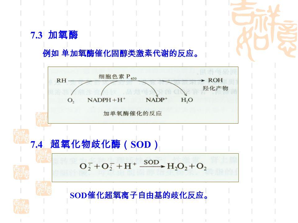 7.3 加氧酶 7.4 超氧化物歧化酶( SOD ) 例如 单加氧酶催化固醇类激素代谢的反应。 SOD 催化超氧离子自由基的歧化反应。