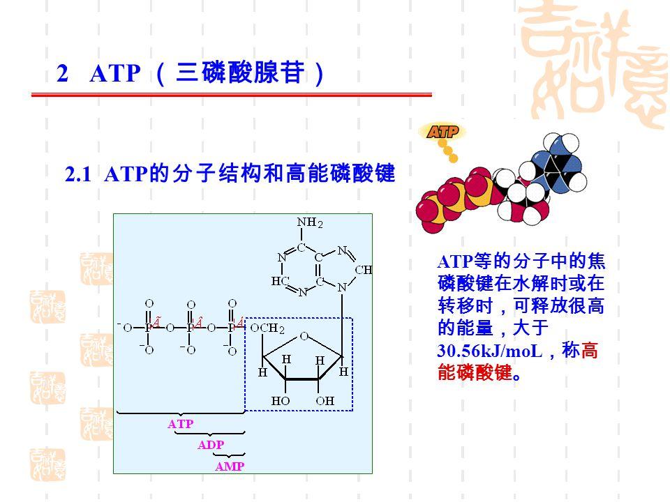 表 9 ‑ 3 各种磷酸化合物的水解自由能 磷酸化合物 水解自由能 ΔG ( kJ/moL ) 磷酸烯醇式丙酮酸( PEP ) - 61.69 氨基甲酰磷酸 - 50.50 乙酰基磷酸 - 43.12 磷酸肌酸( CP ) - 43.12 焦磷酸( PPi ) - 33.49 ATP ( →ADP + Pi ) - 30.56 葡萄糖 -1- 磷酸( G-1-P ) - 20.93 葡萄糖 -6- 磷酸( G-6-P ) - 13.82 α- 磷酸甘油 - 9.21 高能磷酸化合物有转移其磷酰基的倾向, 形成较低能量的磷酸脂。 ATP 是磷酰基的传递体。 2.2 ATP 具有较高的磷酸基团转移势