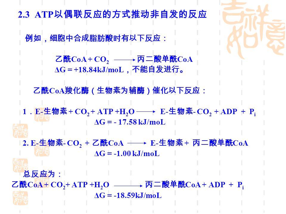 2.3 ATP 以偶联反应的方式推动非自发的反应 例如,细胞中合成脂肪酸时有以下反应: 乙酰 CoA + CO 2 丙二酸单酰 CoA ΔG = +18.84kJ/moL ,不能自发进行。 乙酰 CoA 羧化酶(生物素为辅酶)催化以下反应: 1 . E- 生物素 + CO 2 + ATP +H 2