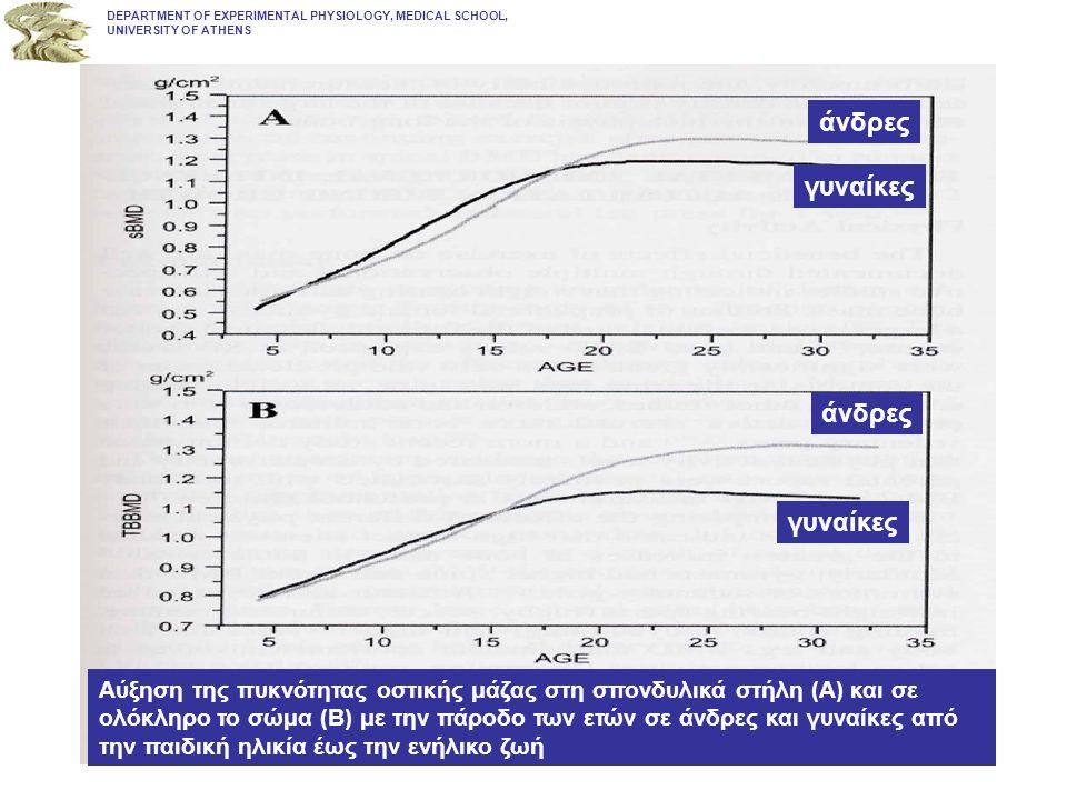 DEPARTMENT OF EXPERIMENTAL PHYSIOLOGY, MEDICAL SCHOOL, UNIVERSITY OF ATHENS Αύξηση της πυκνότητας οστικής μάζας στη σπονδυλικά στήλη (Α) και σε ολόκλη