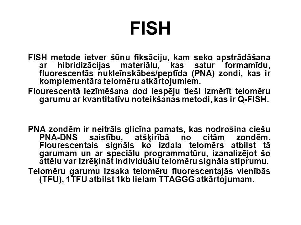 FISH FISH metode ietver šūnu fiksāciju, kam seko apstrādāšana ar hibridizācijas materiālu, kas satur formamīdu, fluorescentās nukleīnskābes/peptīda (P
