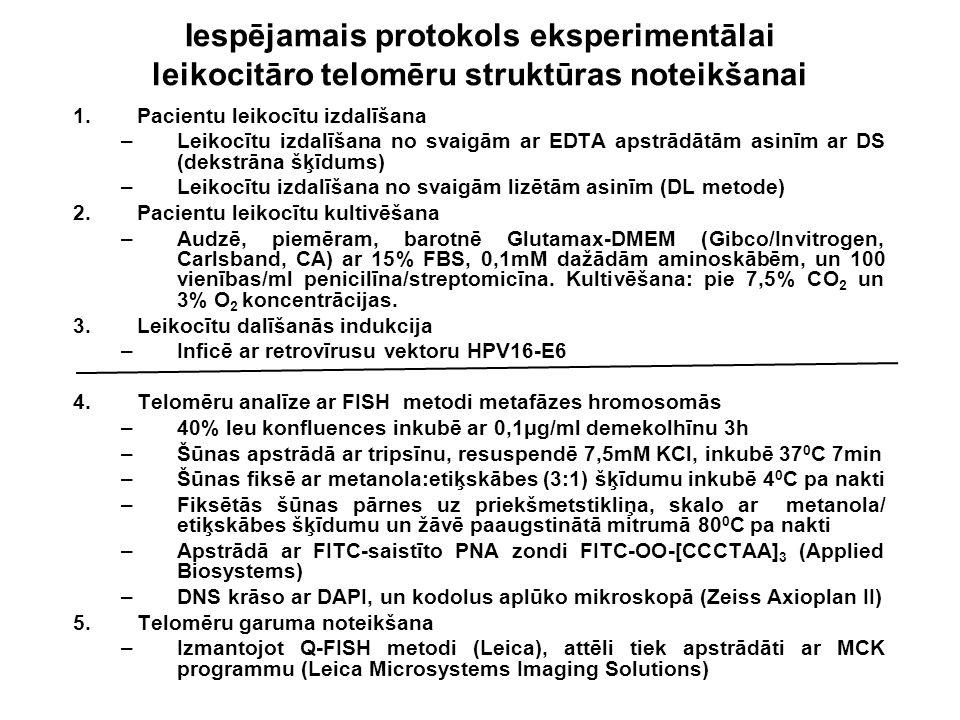 Iespējamais protokols eksperimentālai leikocitāro telomēru struktūras noteikšanai 1.Pacientu leikocītu izdalīšana –L–Leikocītu izdalīšana no svaigām a