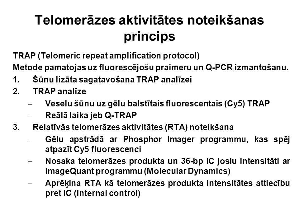 Telomerāzes aktivitātes noteikšanas princips TRAP (Telomeric repeat amplification protocol) Metode pamatojas uz fluorescējošu praimeru un Q-PCR izmant