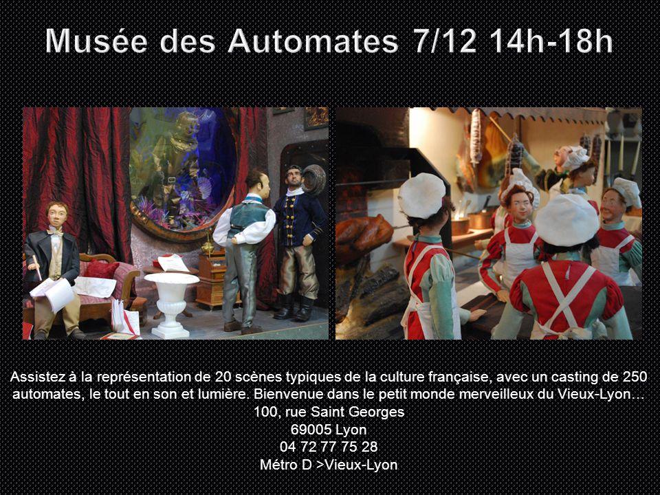 Assistez à la représentation de 20 scènes typiques de la culture française, avec un casting de 250 automates, le tout en son et lumière.