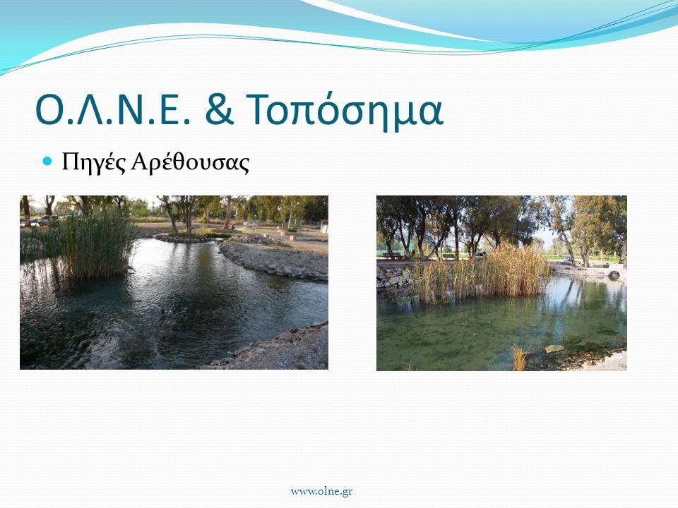 Ο.Λ.Ν.Ε. & Τοπόσημα Πηγές Αρέθουσας www.olne.gr